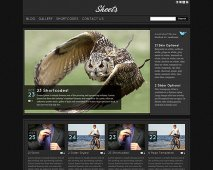 Sheets Wordpress